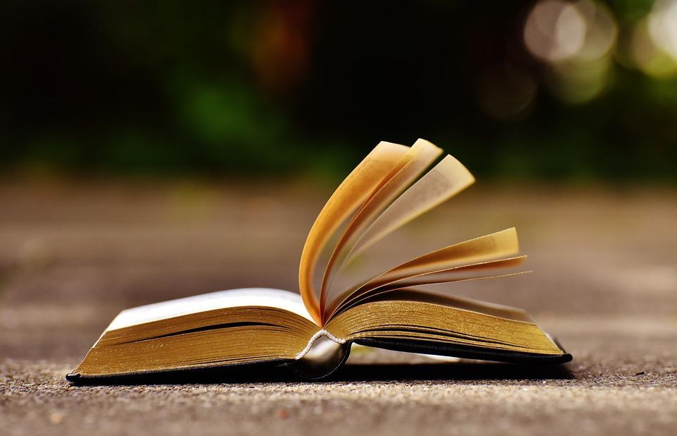 Картинки раскрытые книги, горизонтальные